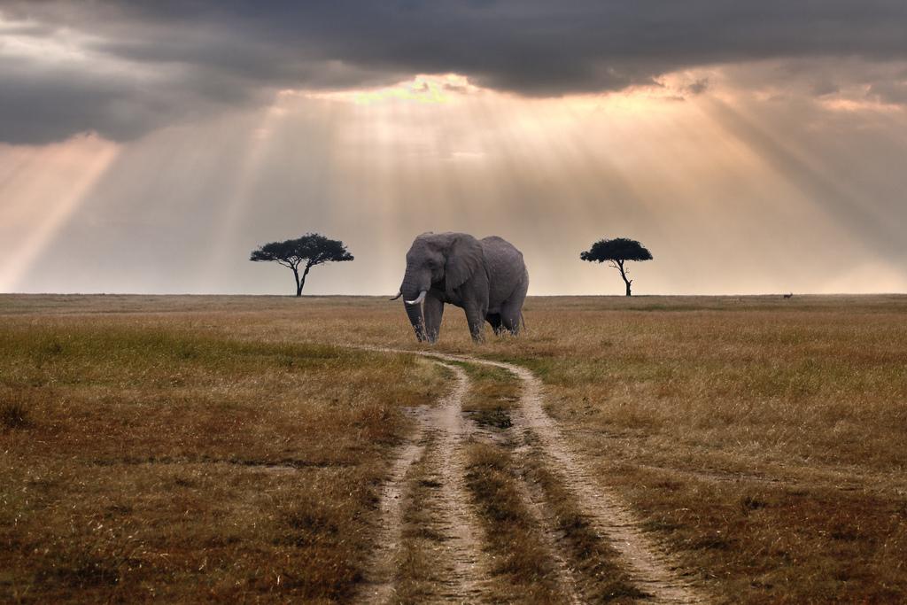 Best Tanzania Vacation